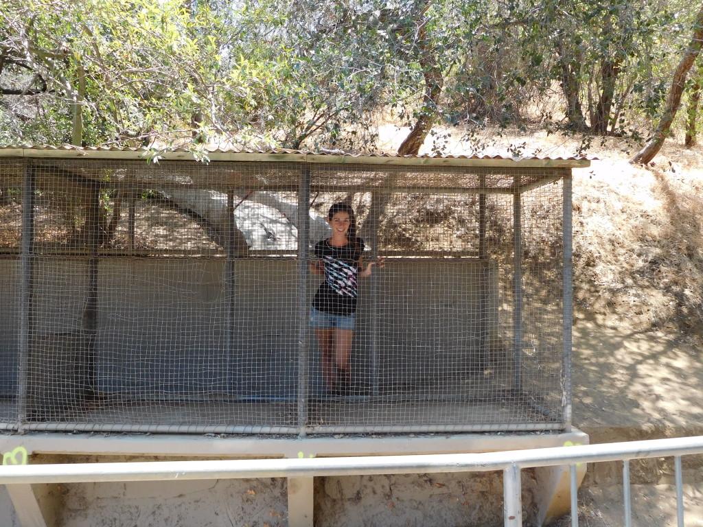 old la zoo 1