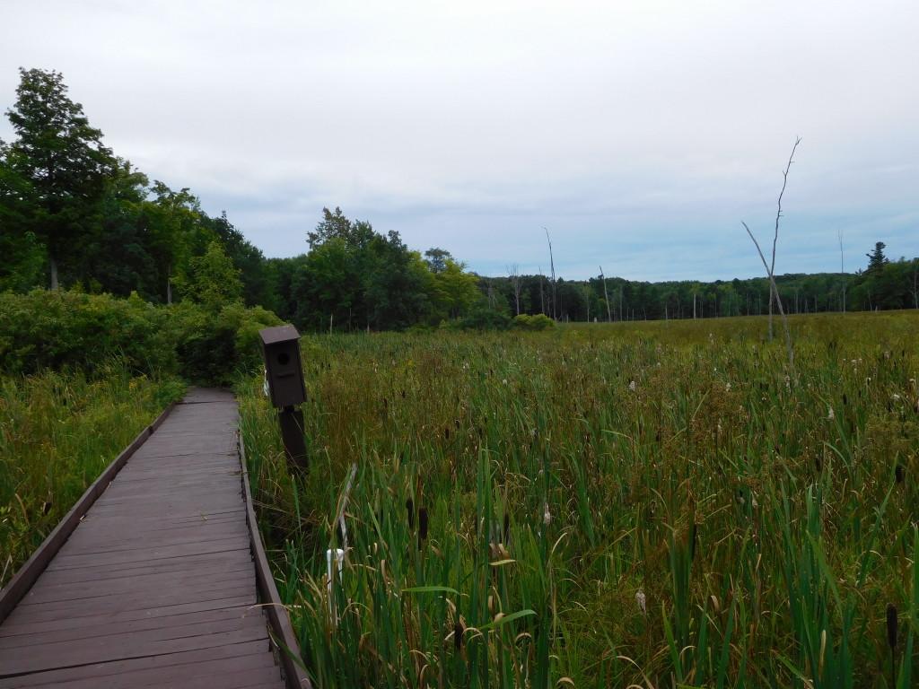 Wellesley Island State Park 3