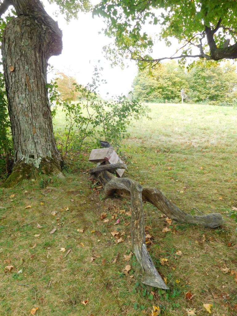 Stone Quarry Hill Art Park 5