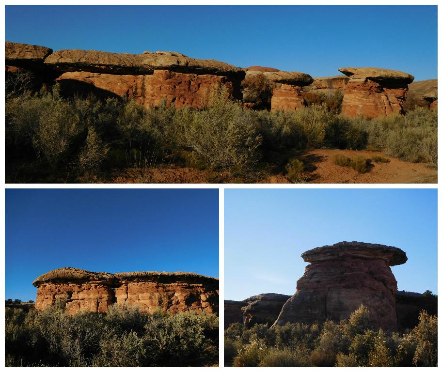 NEEDLES_canyonlands_mushrooms