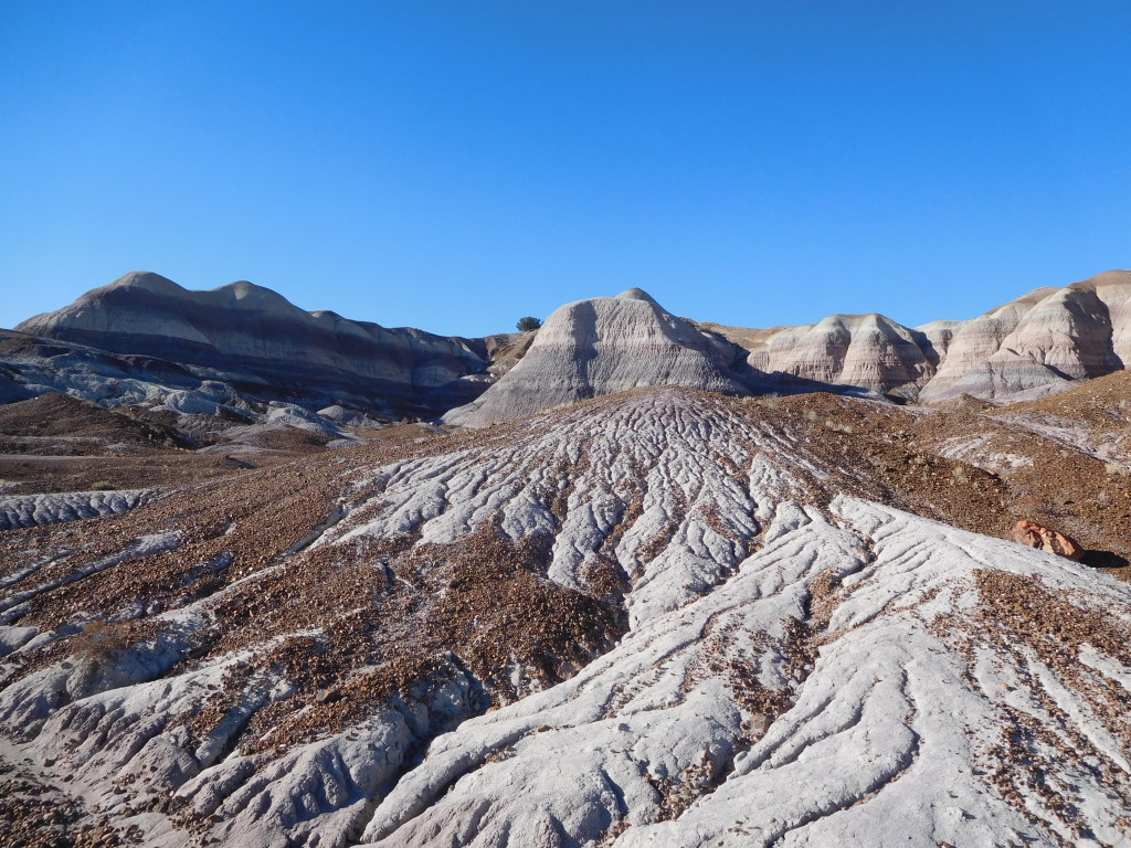 petrified_forest_national_park_blue_mesa_2