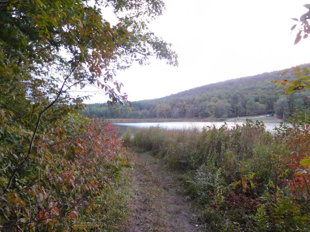 Lawson_Lake_County_Park_albany_8