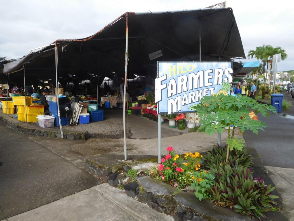 hilo_farmers_market_big_island_6