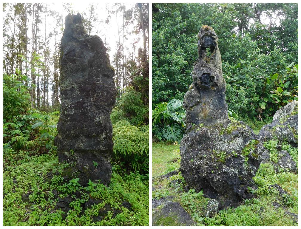 lava_tree_big_island