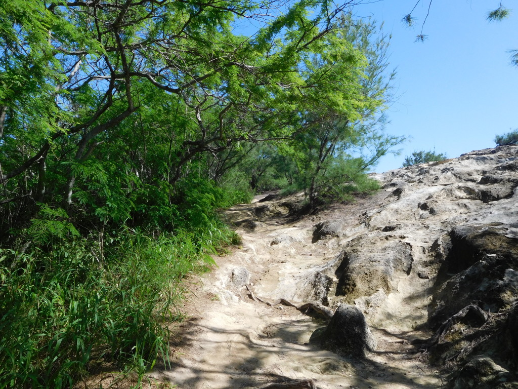 Mahaulepu_Heritage_trail_5