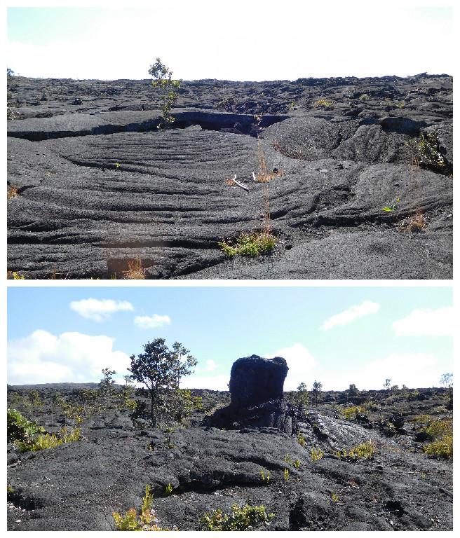 Puu_Huluhulu_trail_volcanoes_5