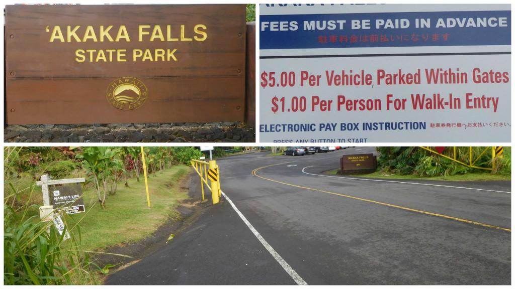 akaka_falls_hawaii