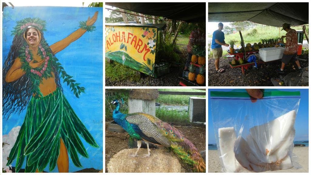 aloha_farm_stand_