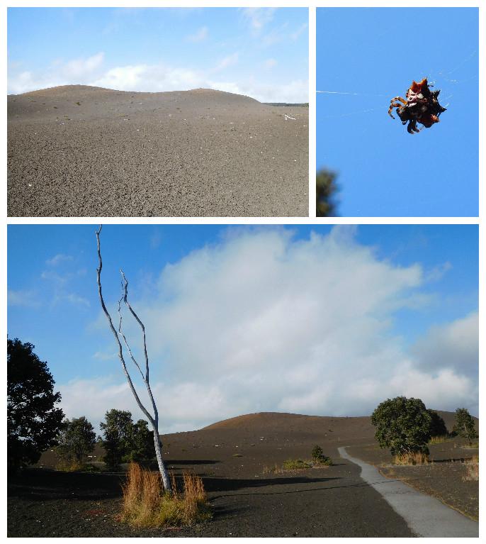 devastation_trail_volcanoes