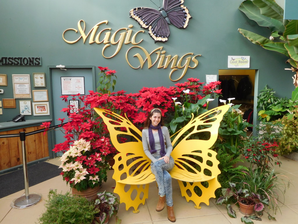 Magic_Wings_Butterfly_Conservatory_and_gardens
