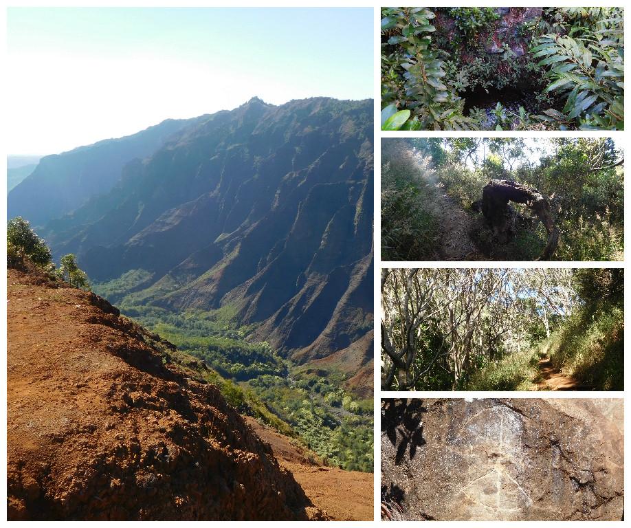 canyon_trail_waipoo_falls