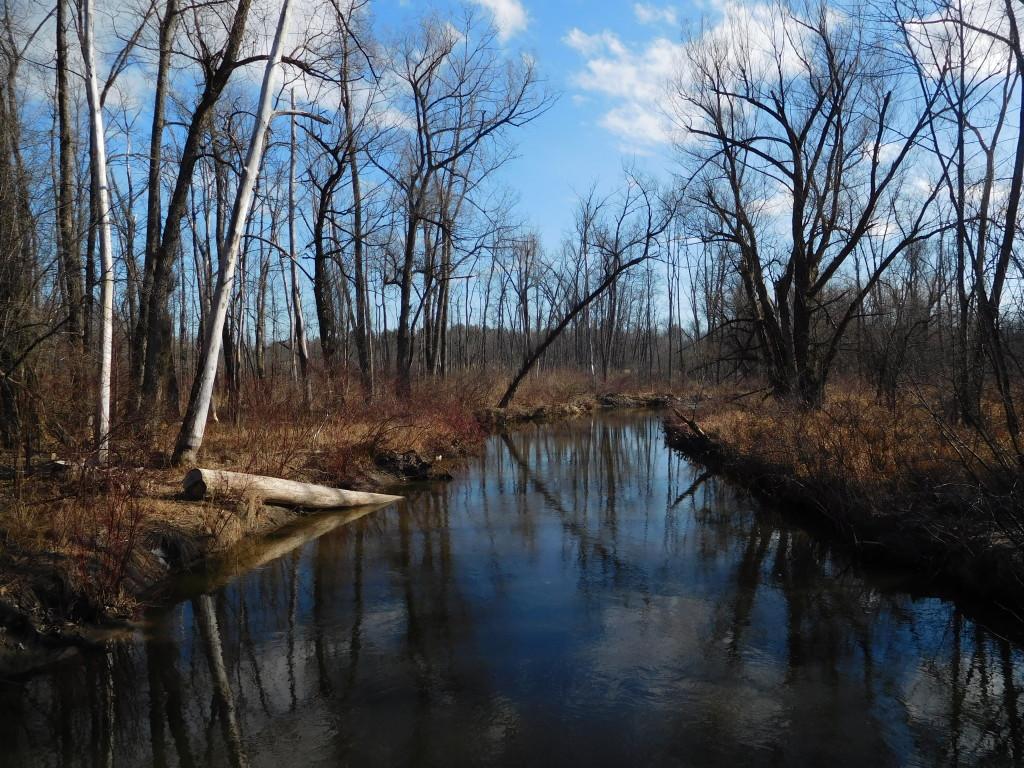 geyser_creek_trail_2