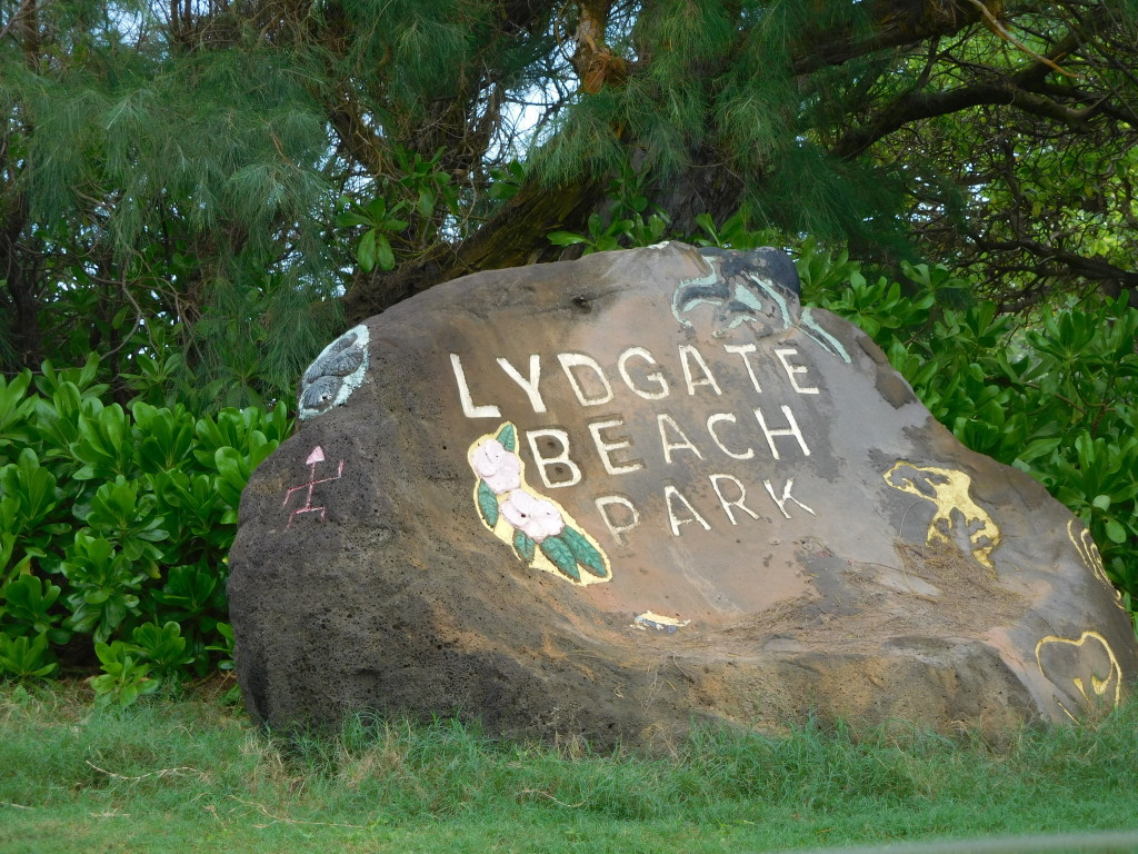 lydgate_beach_hawaii