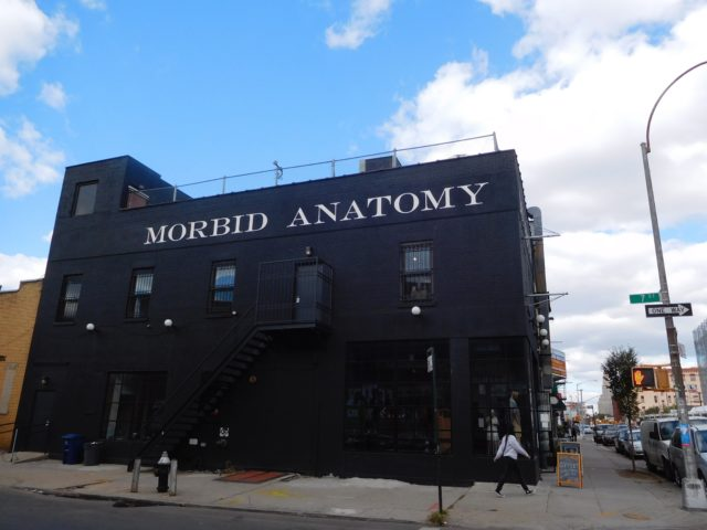 morbid_anatomy_museum_brooklyn