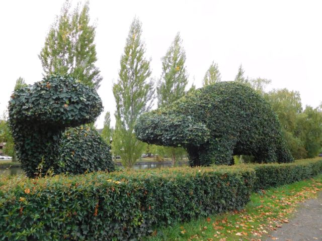 dinosaur_topiary_seattle