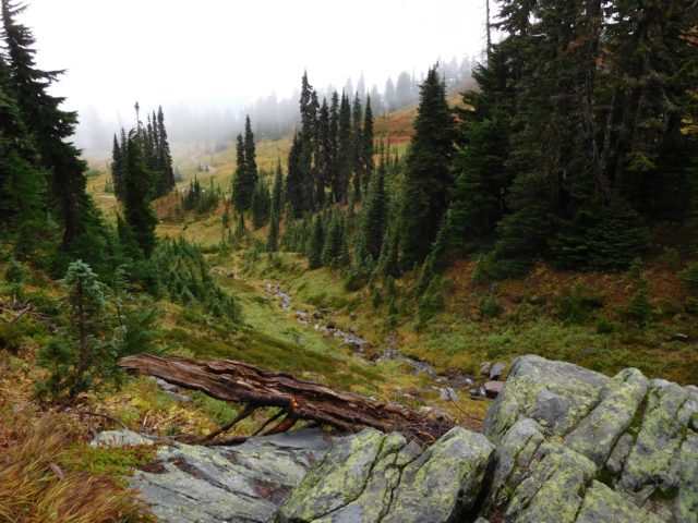 skyline_trail_mount_rainier_2