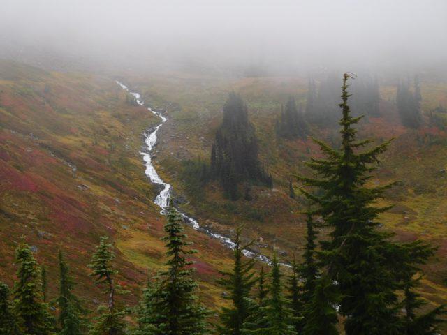 skyline_trail_mount_rainier_3