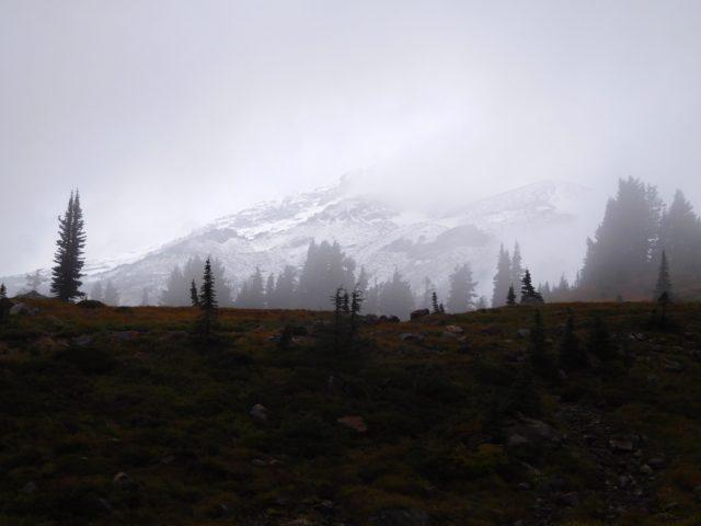 skyline_trail_mount_rainier_6